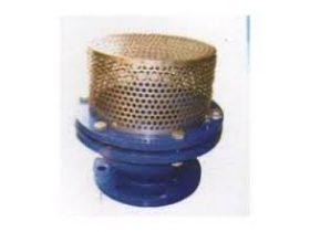 Oferta, National, FOOT VALVES SUPPLIERS IN KOLKATA